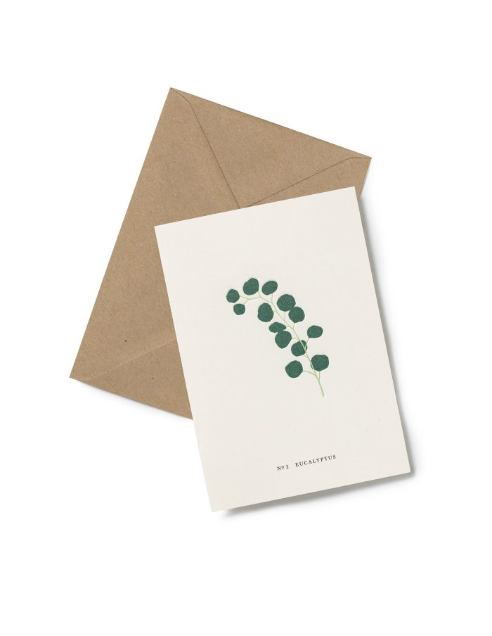 Kartotek 'No2 EUCALYPTUS' Greeting Card