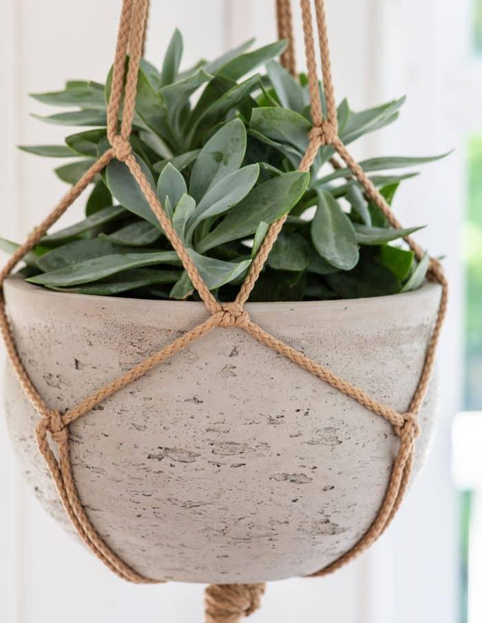 Concrete Hanging Plant Pot